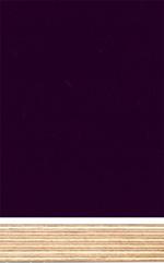 birke sperrholz filmbeschichtet schwarz holzmuster. Black Bedroom Furniture Sets. Home Design Ideas