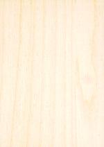 Holzmuster: Birke Multiplexplatte