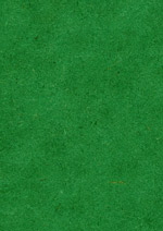 MDF coloured green