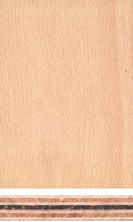 Beech plywood with foil centre